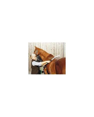 douche-cheval-chevaux-chiens-ref3416