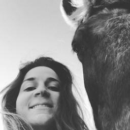 So happy & lucky 🍀 1er avril 2020 : 2 ans que j'ai créé Maison Aubérie. Merci à vous tous de faire partie de cette aventure ❤️ À venir : Ouverture du nouveau site 🦄  Pour suivre toutes mes aventures 👉 @clothilde_frt  #horse #horselife #equestrianlife #equestrianlifestyle #pony #dressagehorse #jumpinghorse #horseofinstagram #picoftheday #pferd #sellefrancais #dressage #dressagecompetition #paris