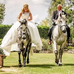 Qui rêve d'avoir son cheval à son mariage 🙋♀️? Sélection des plus belles photos de mariage à cheval 💕  #horse #horselover #equestrianlife #equestrianlifestyle #horsephotograpy #horsewedding #cheval #dressagehorse #horsecare #summertime #holiday #happyhorse