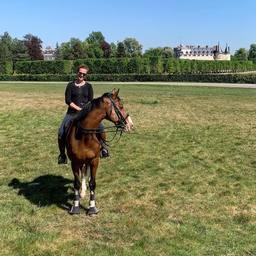 Un cheval confiné @ecurie_mgd @clothilde_frt  #horse #horselife #equestrianlife #equestrianlifestyle #pony #dressagehorse #jumpinghorse #horseofinstagram #picoftheday #pferd #sellefrancais #dressage #dressagecompetition #paris