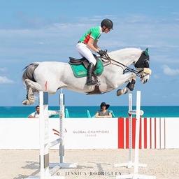 Qui a déjà eu la chance de sauter en bord de mer ? 🏝 Les couleurs, la force... magnifique photo de @jessik_r.  #horse #horsejumping #horselover #equestrianlife #equestrianlifestyle #holidayswithmyhorse #summer #pony #dressagehorse #horserider #horsephotography #horselife #horselifestyle