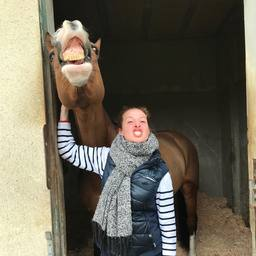 Mood du jour 😝  #horse #cso #horselover #dressagehorse #instaponey #horse #horselife #equestrianlife #equestrianlifestyle #pony #dressagehorse #jumpinghorse #horseofinstagram #picoftheday #pferd #sellefrancais #dressage #dressagecompetition #paris